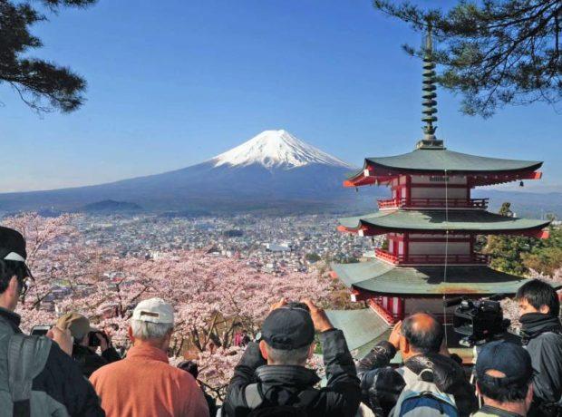 Yaponiyadan turistlərə sürpriz
