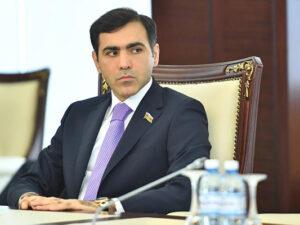 Anar Məmmədov: Ermənistan hakimiyyəti məntiqli, rasional düşüncəyə malik deyil