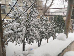 Faktiki hava açıqlandı: Bakıya 20 sm qar yağıb