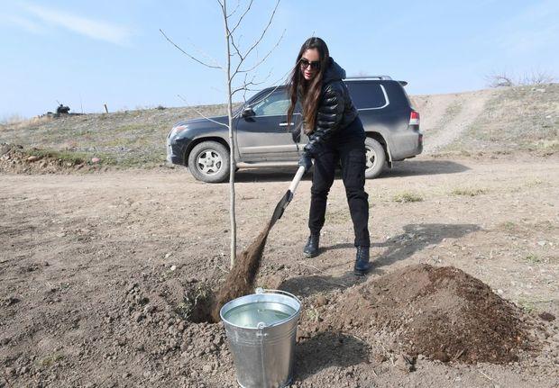 Leyla Əliyeva Qızılağac Milli Parkında ağac əkdi